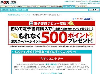 kobo_application.jpg